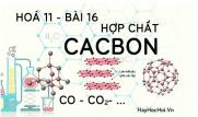 Tính chất hoá học của cacbon oxit (CO), cacbon dioxit (CO2) muối cabonnat và bài tập - hoá 11 bài 16